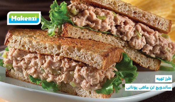 طرز تهیه ساندویچ تن ماهی یونانی